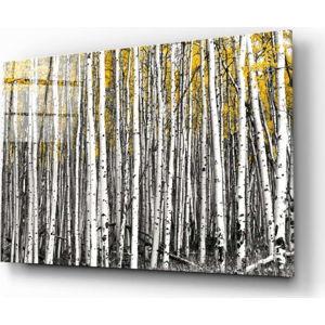 Skleněný obraz Insigne Yellow Forest,110 x70cm