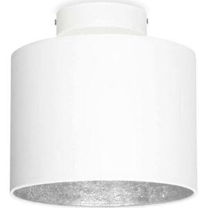 Bílé stropní svítidlo s detailem ve stříbrné barvě Sotto Luce MIKA Elementary XS CP