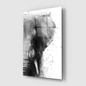 Skleněný obraz Insigne Elephant,46 x72cm