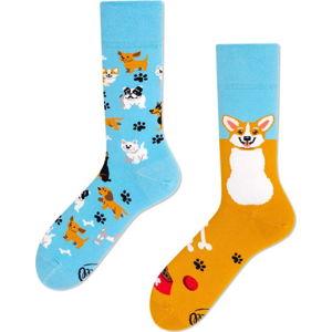 Ponožky Many Mornings Playful Dog,vel. 43–46