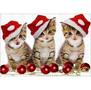 Koberec Vitaus Christmas Period Three Cats, 50 x 80 cm