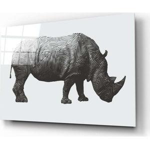 Skleněný obraz Insigne Rhino Rhino,72 x46cm